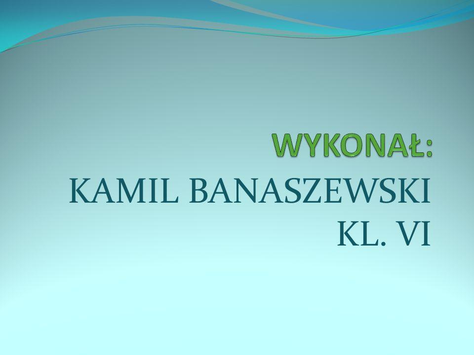 KAMIL BANASZEWSKI KL. VI