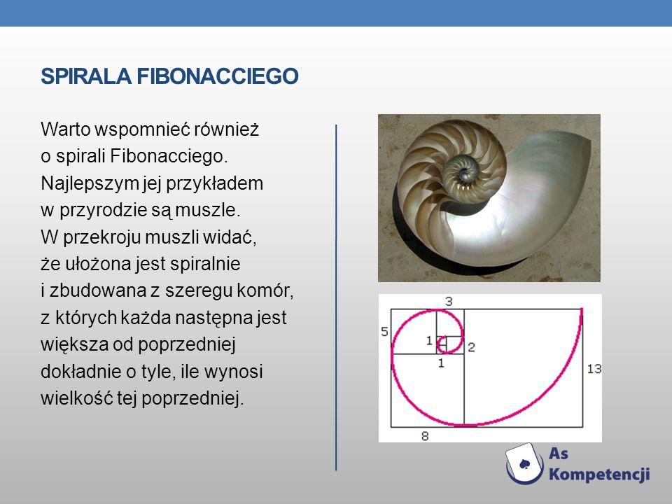 Spirala Fibonacciego Warto wspomnieć również o spirali Fibonacciego.