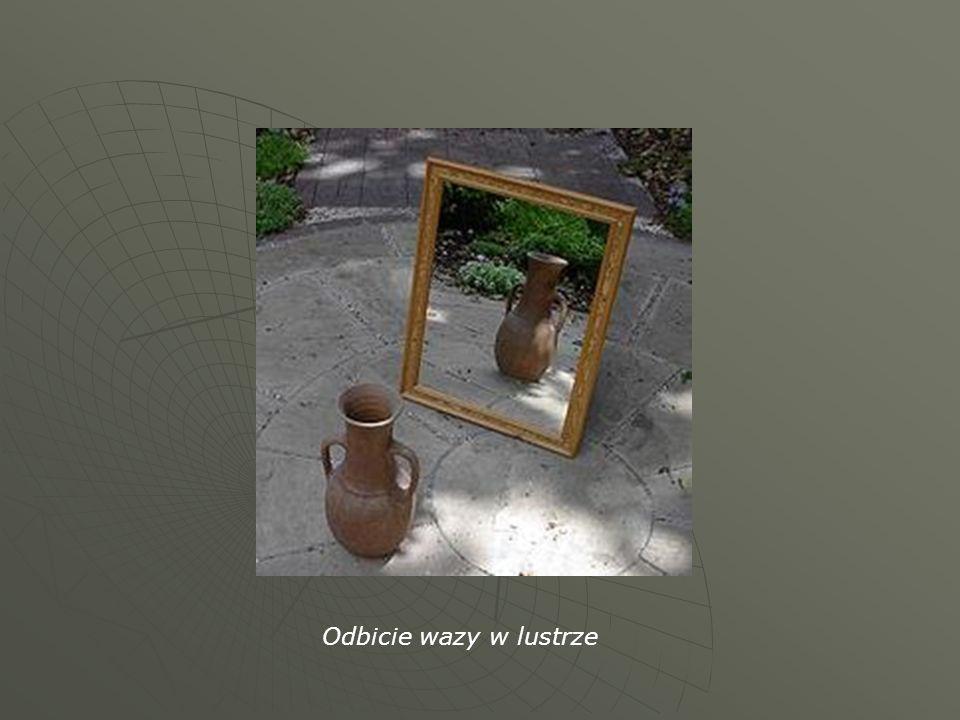 Odbicie wazy w lustrze