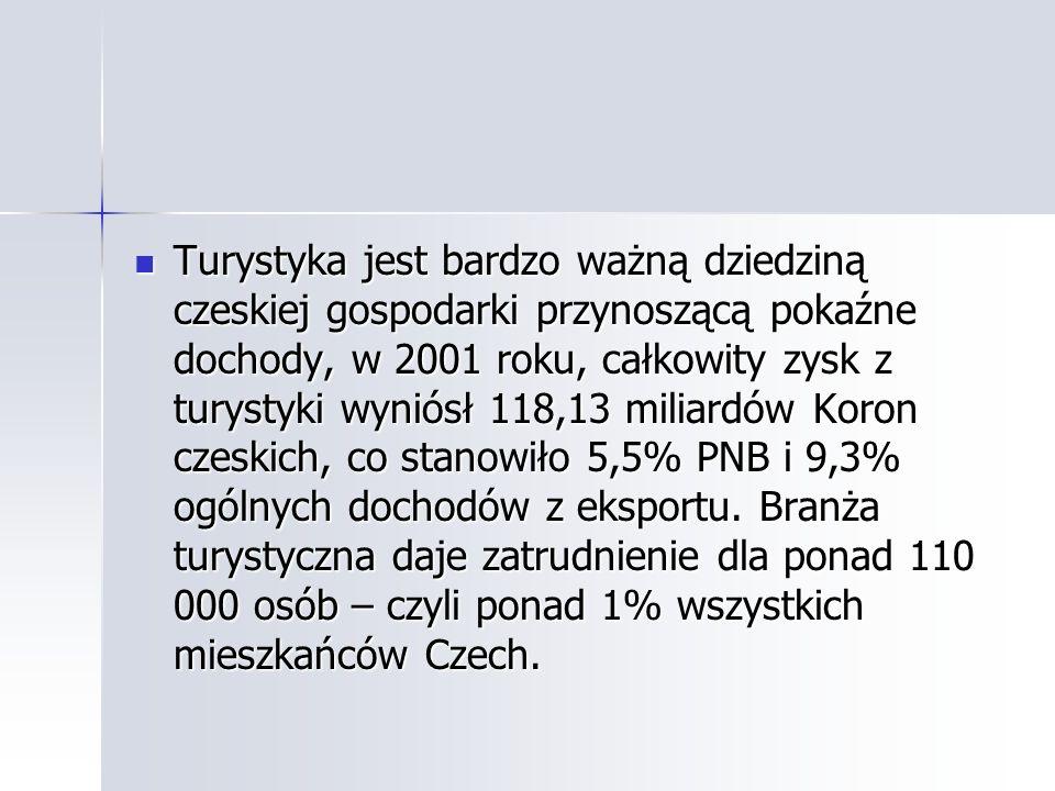 Turystyka jest bardzo ważną dziedziną czeskiej gospodarki przynoszącą pokaźne dochody, w 2001 roku, całkowity zysk z turystyki wyniósł 118,13 miliardów Koron czeskich, co stanowiło 5,5% PNB i 9,3% ogólnych dochodów z eksportu.