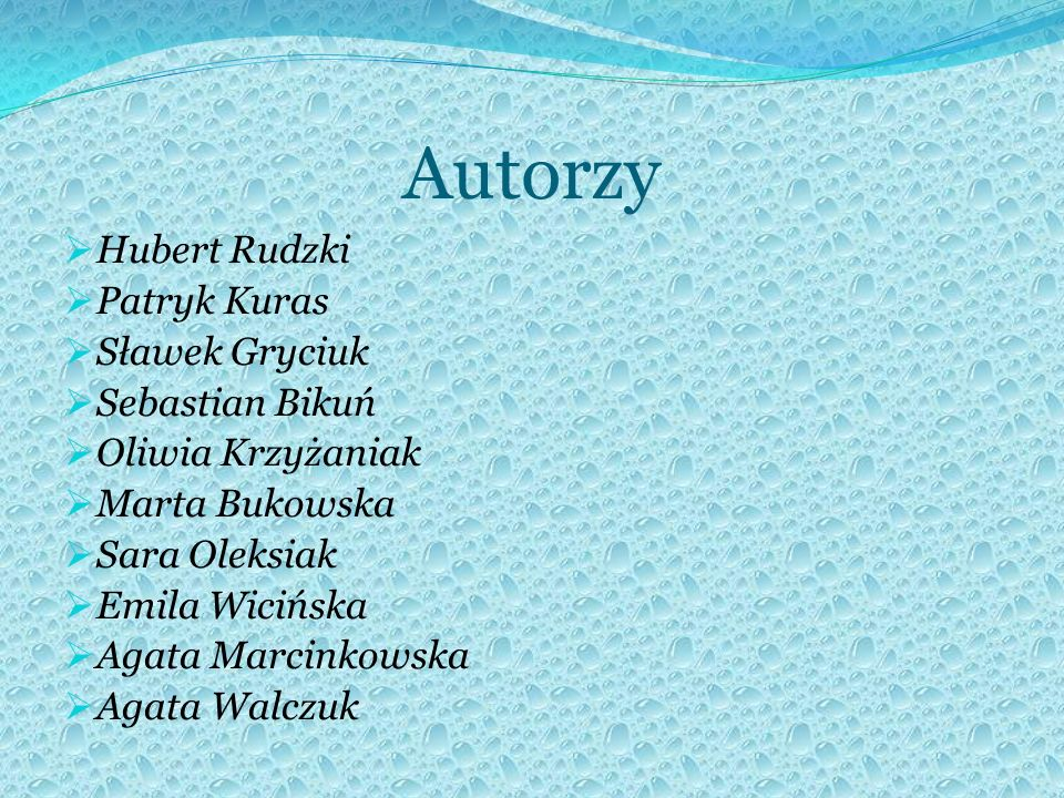 Autorzy Hubert Rudzki Patryk Kuras Sławek Gryciuk Sebastian Bikuń