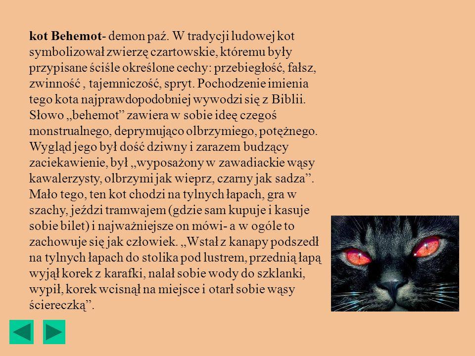 kot Behemot- demon paź.