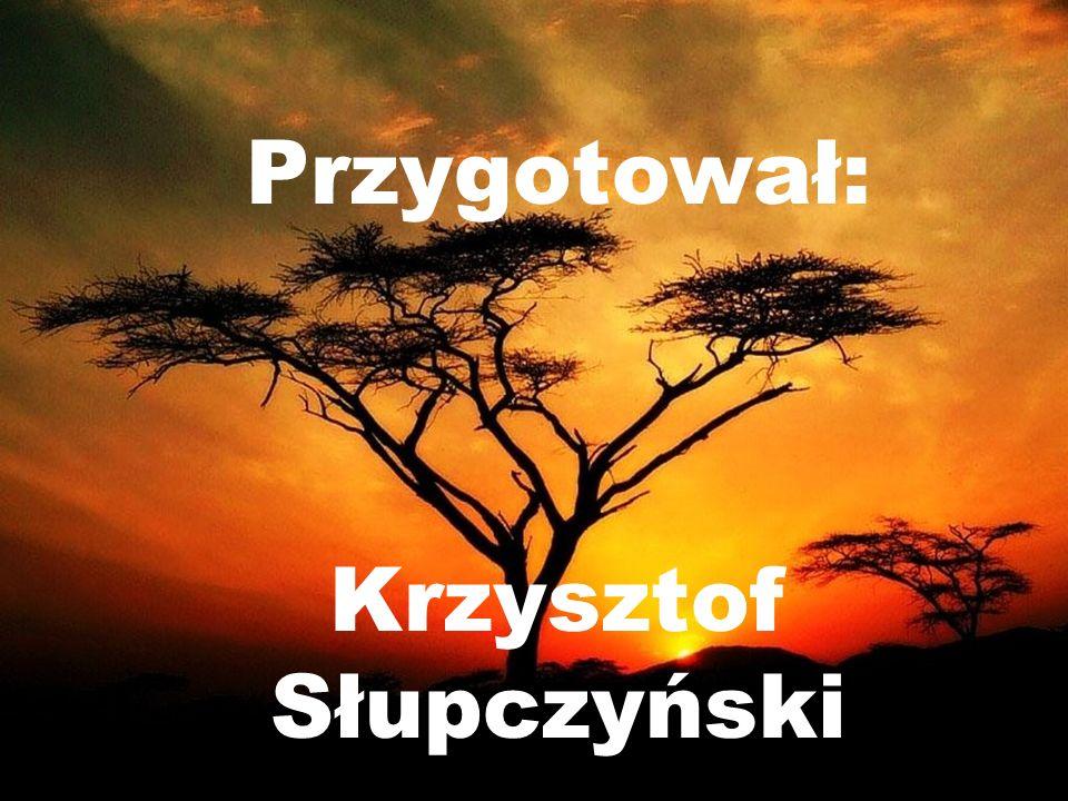 Krzysztof Słupczyński