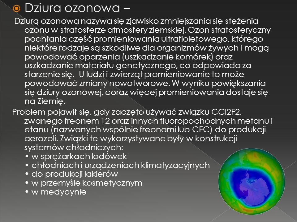 Dziura ozonowa –