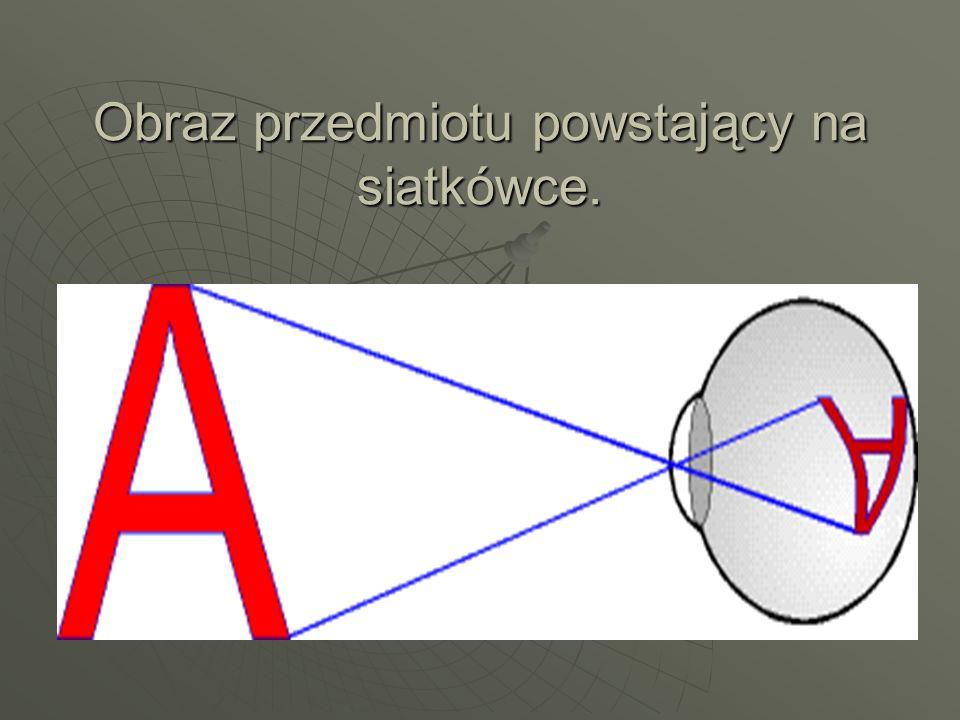 Obraz przedmiotu powstający na siatkówce.