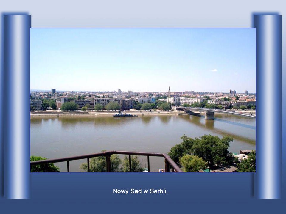 Nowy Sad w Serbii.