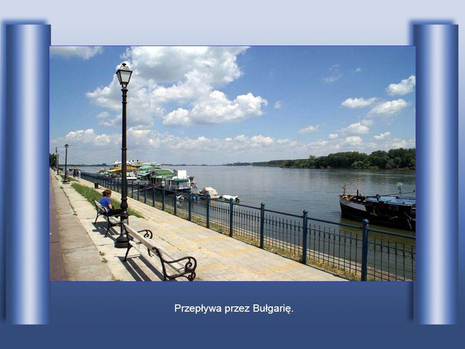 Przepływa przez Bułgarię.