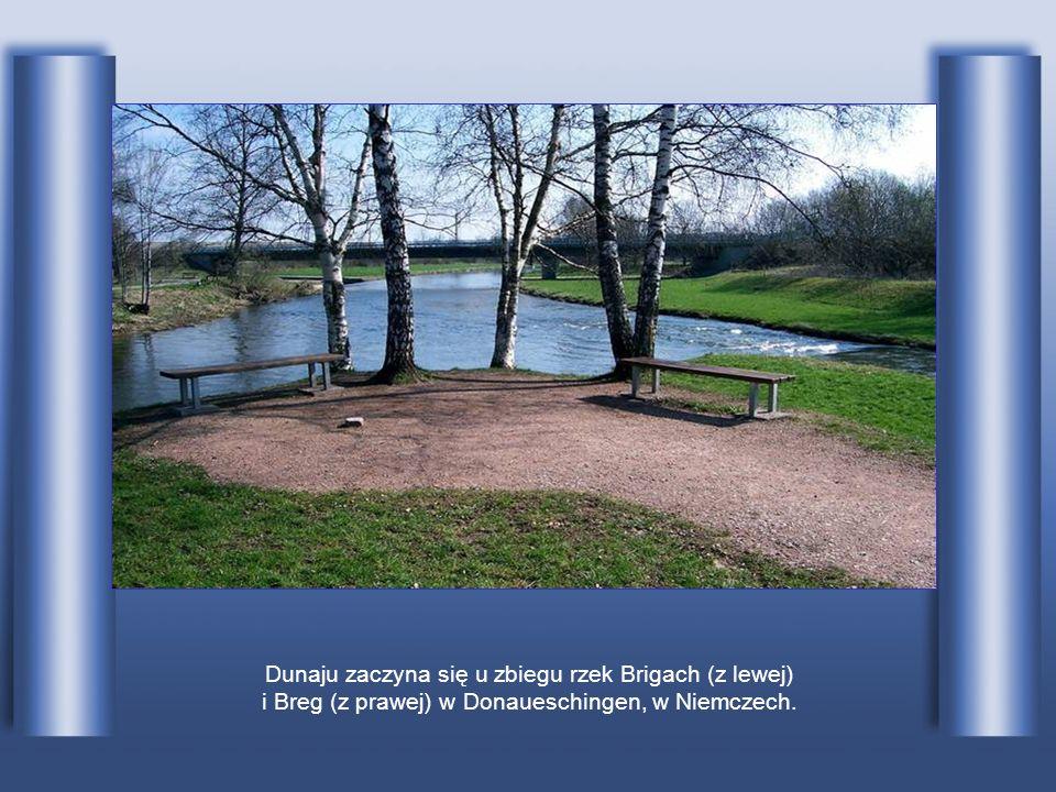 Dunaju zaczyna się u zbiegu rzek Brigach (z lewej)