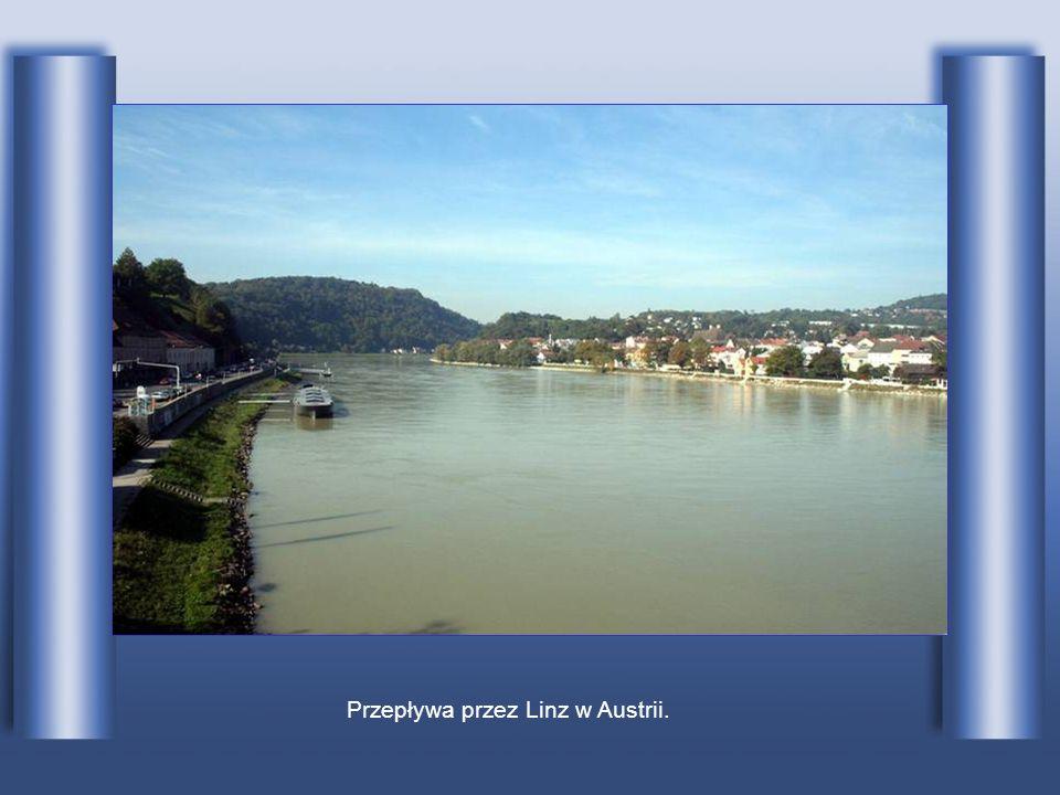 Przepływa przez Linz w Austrii.