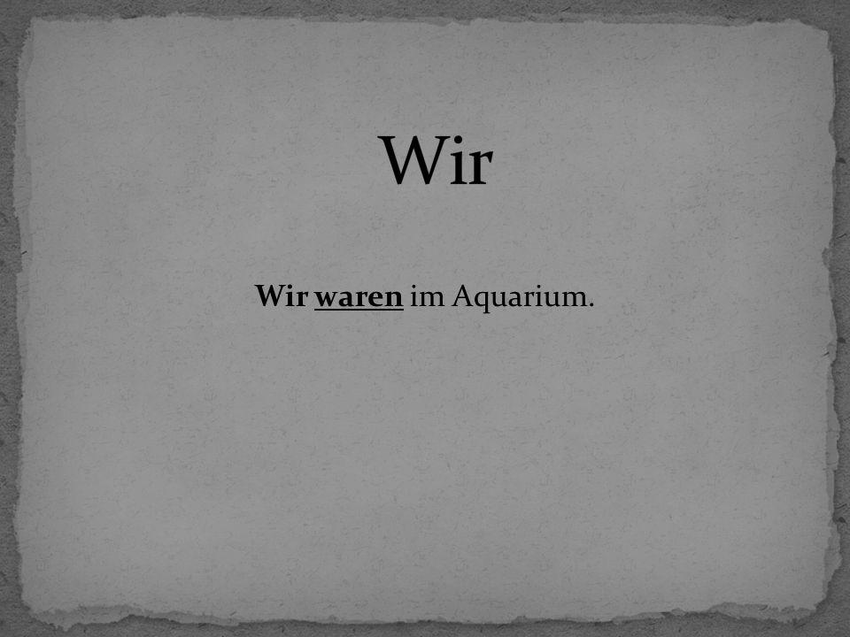 Wir Wir waren im Aquarium.