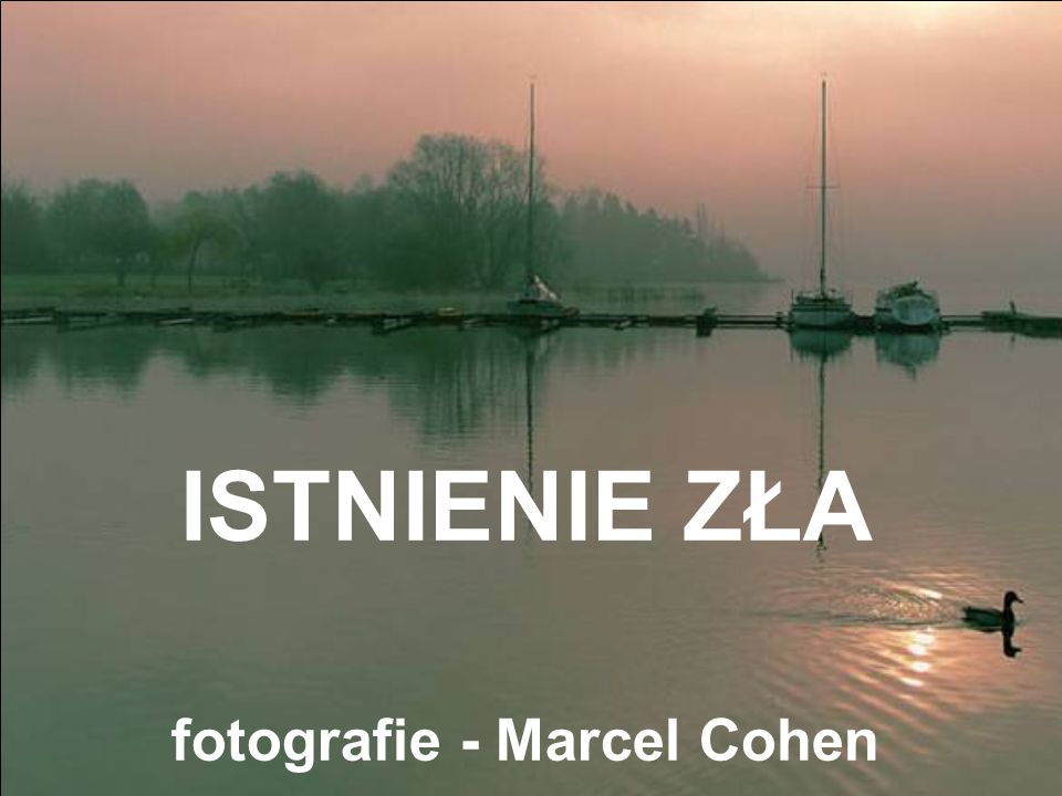 fotografie - Marcel Cohen
