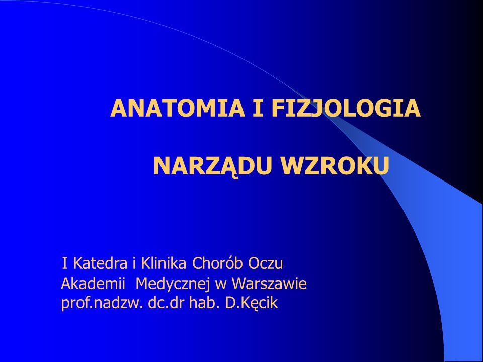 NARZĄDU WZROKU ANATOMIA I FIZJOLOGIA I Katedra i Klinika Chorób Oczu