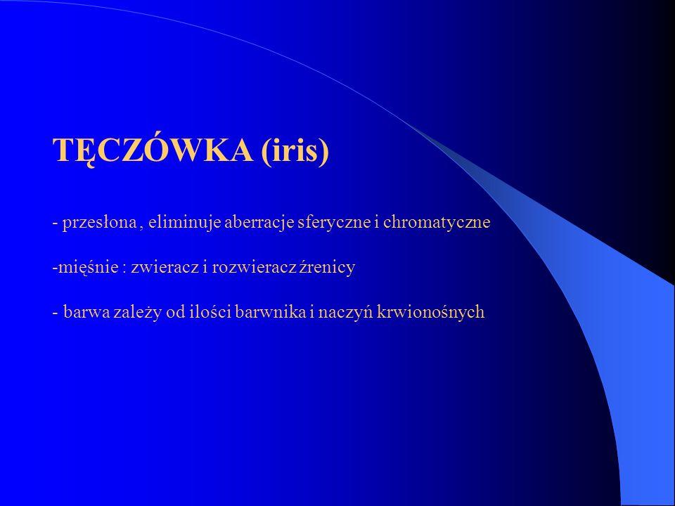 TĘCZÓWKA (iris) - przesłona , eliminuje aberracje sferyczne i chromatyczne. mięśnie : zwieracz i rozwieracz źrenicy.