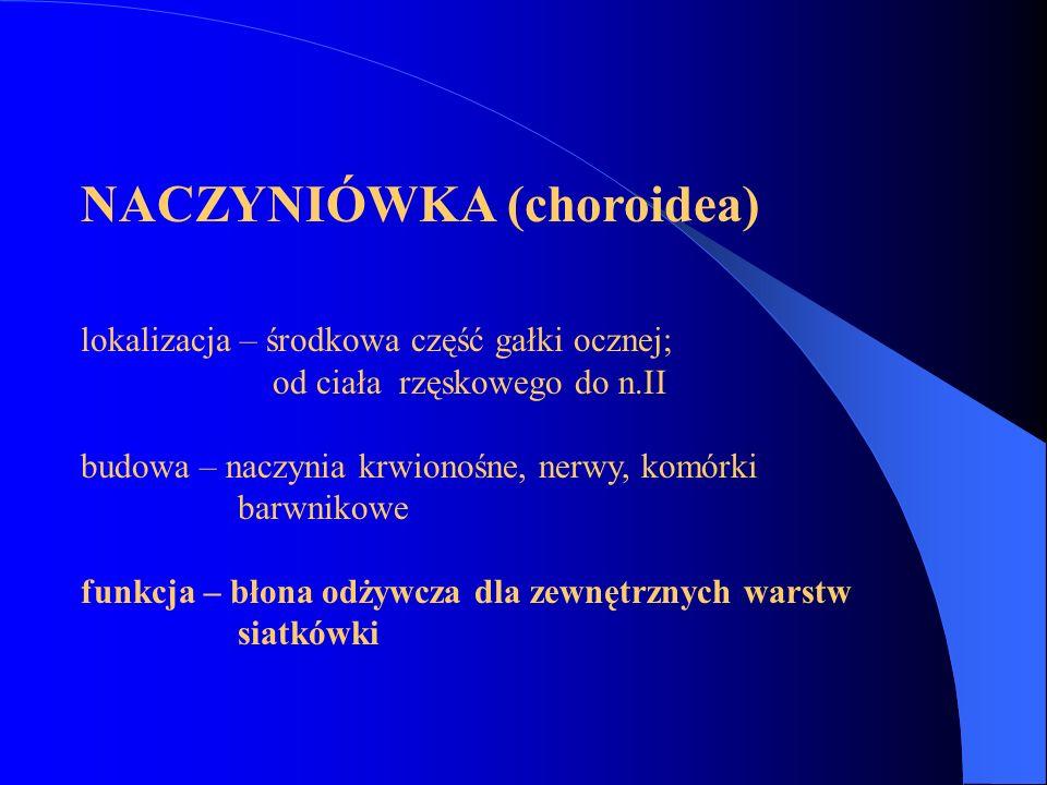 NACZYNIÓWKA (choroidea)