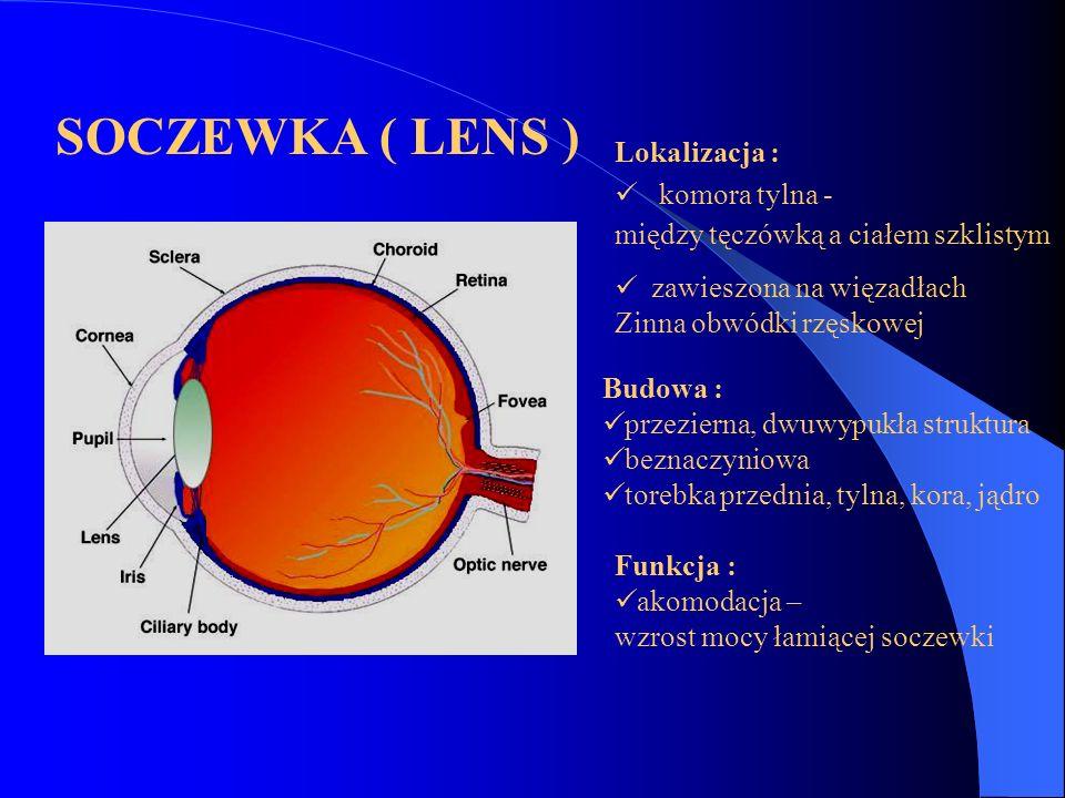 SOCZEWKA ( LENS ) Lokalizacja : komora tylna -
