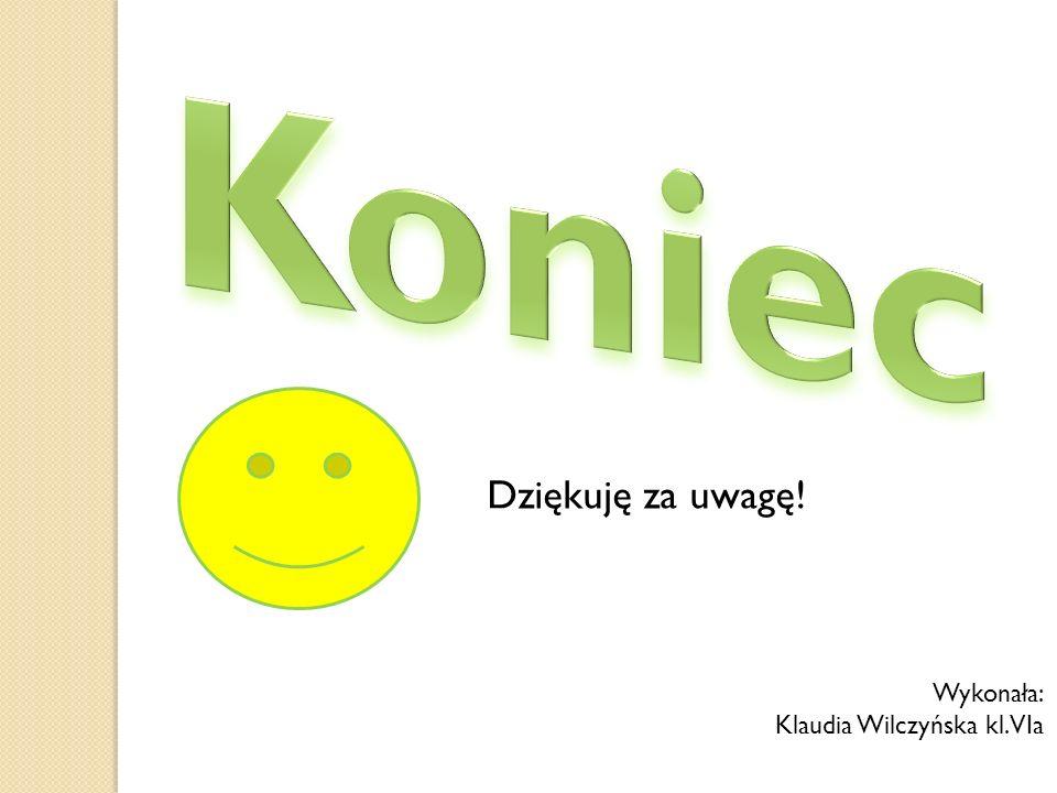 Koniec Dziękuję za uwagę! Wykonała: Klaudia Wilczyńska kl. VIa