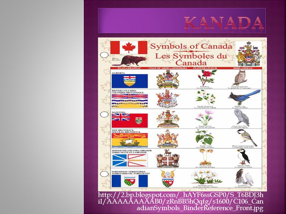 Kanada http://2.bp.blogspot.com/_hAYF6ssGSP0/S_T6BDJ3h iI/AAAAAAAAAB0/zRnBB5hQqfg/s1600/C106_Can adianSymbols_BinderReference_Front.jpg.