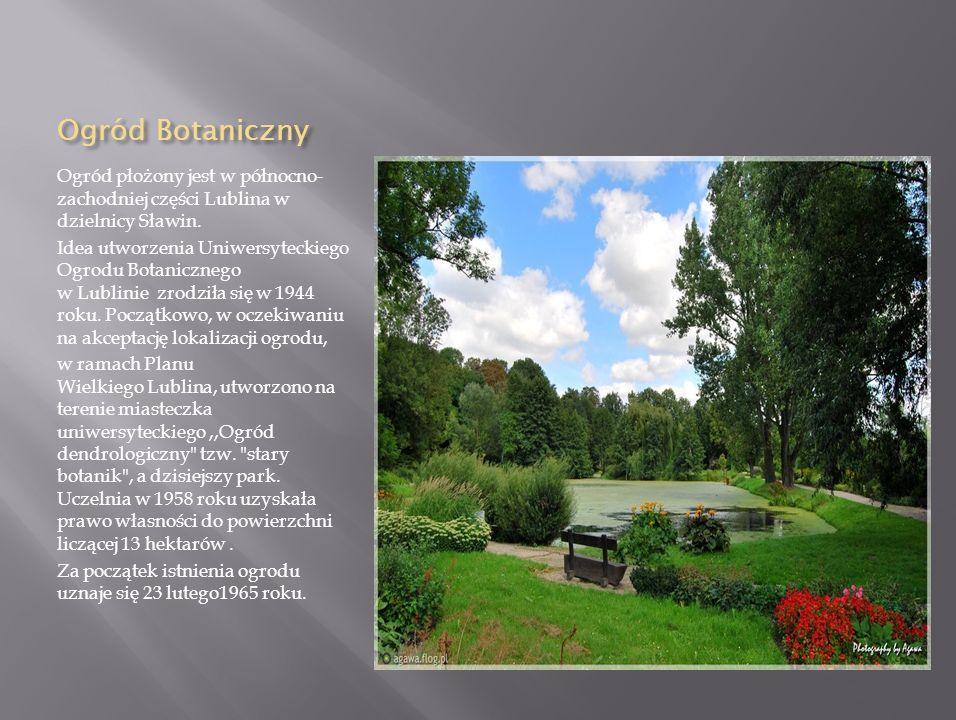Ogród Botaniczny Ogród płożony jest w północno-zachodniej części Lublina w dzielnicy Sławin.