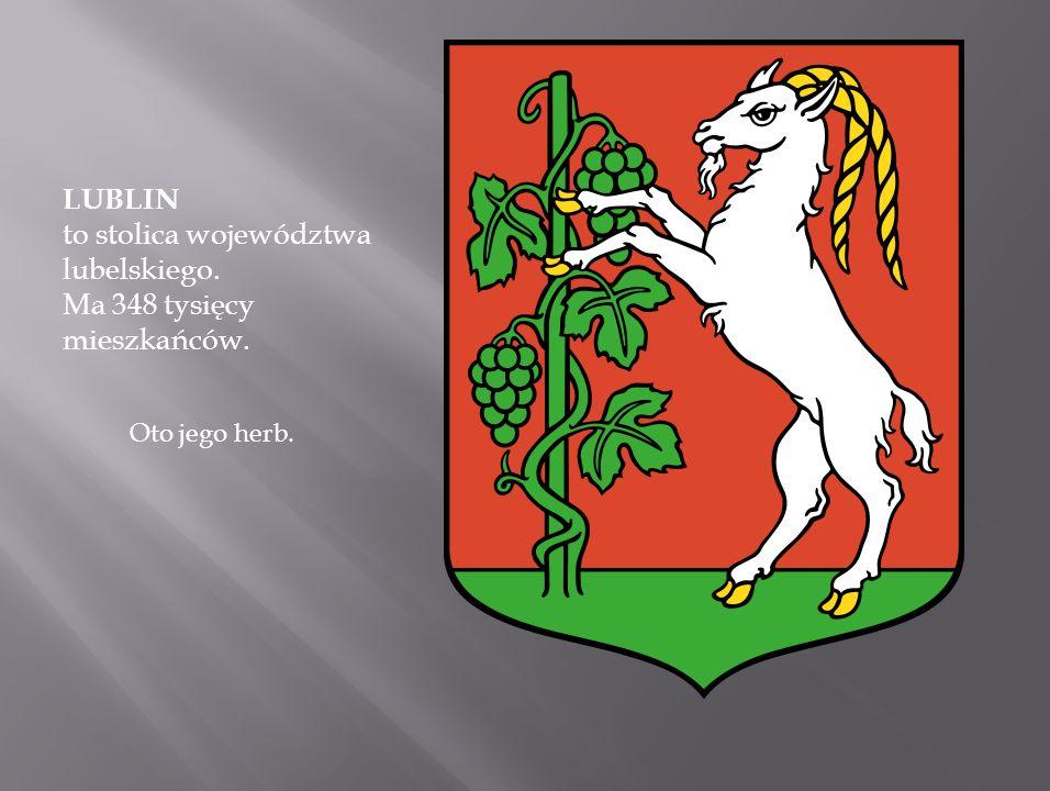 LUBLIN to stolica województwa lubelskiego. Ma 348 tysięcy mieszkańców.