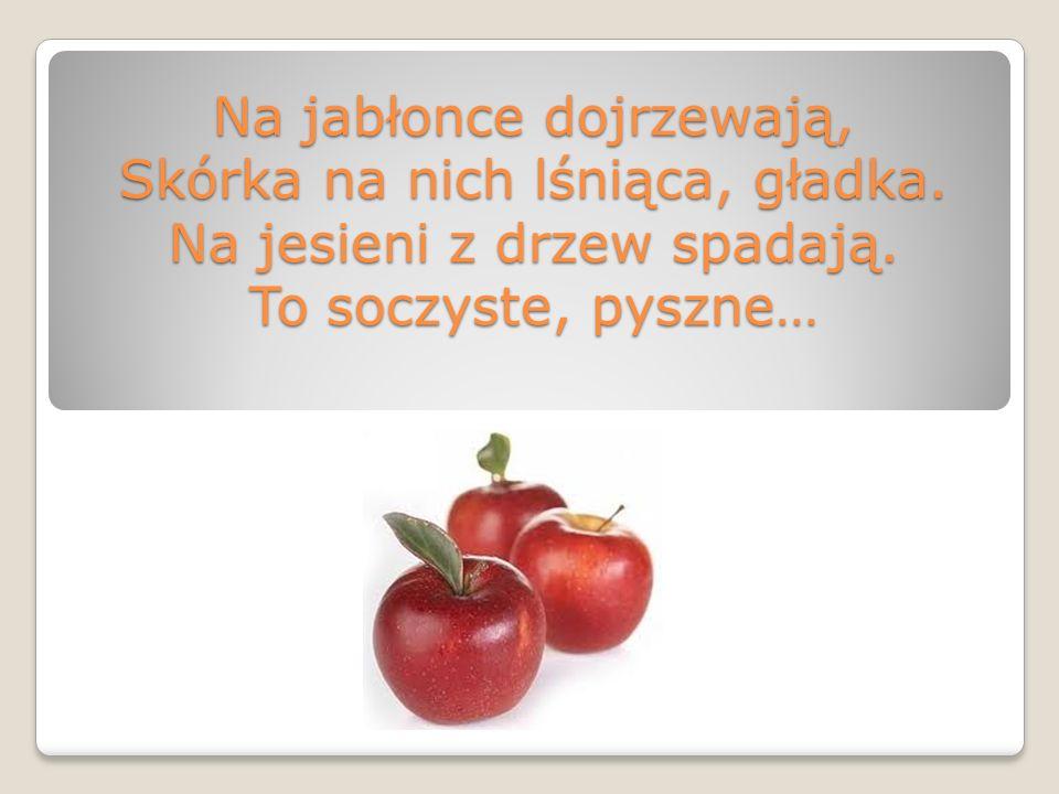 Na jabłonce dojrzewają, Skórka na nich lśniąca, gładka