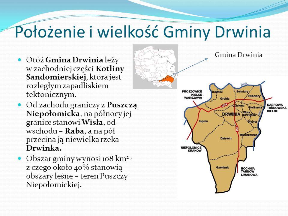 Położenie i wielkość Gminy Drwinia