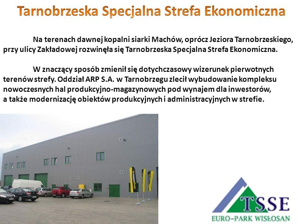 Tarnobrzeska Specjalna Strefa Ekonomiczna