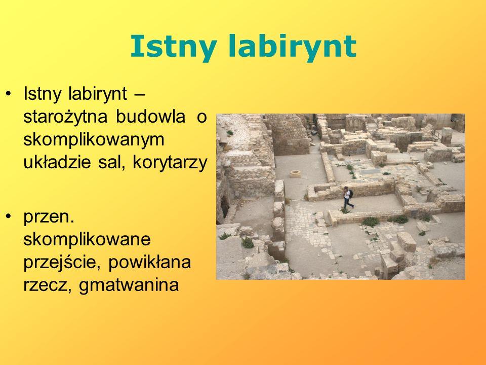 Istny labirynt Istny labirynt – starożytna budowla o skomplikowanym układzie sal, korytarzy.