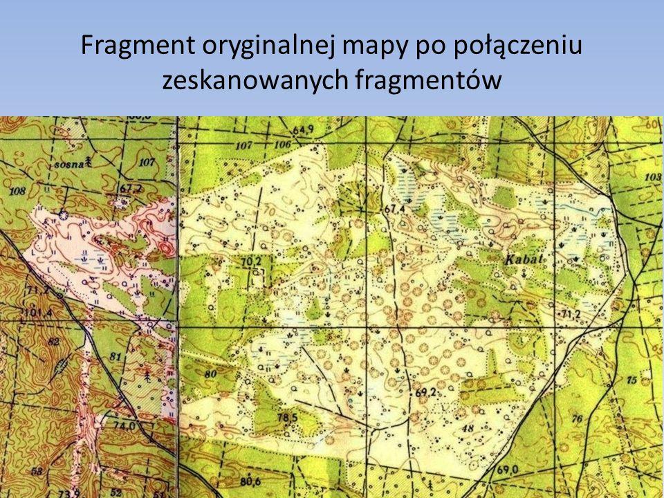Fragment oryginalnej mapy po połączeniu zeskanowanych fragmentów