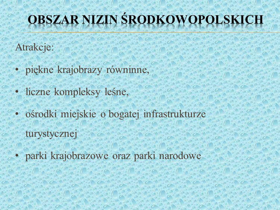 Obszar nizin środkowopolskich