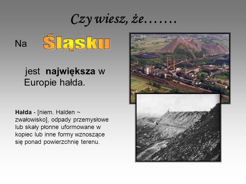 Czy wiesz, że……. Śląsku Na jest największa w Europie hałda.