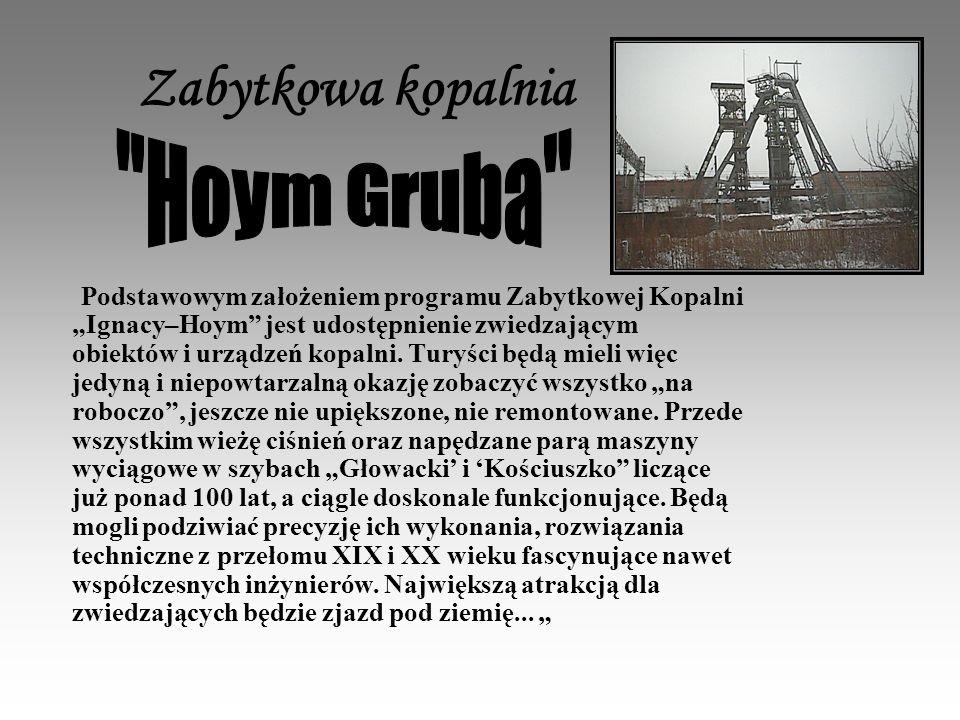 Zabytkowa kopalnia Hoym Gruba
