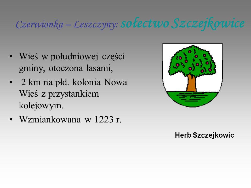 Czerwionka – Leszczyny: sołectwo Szczejkowice