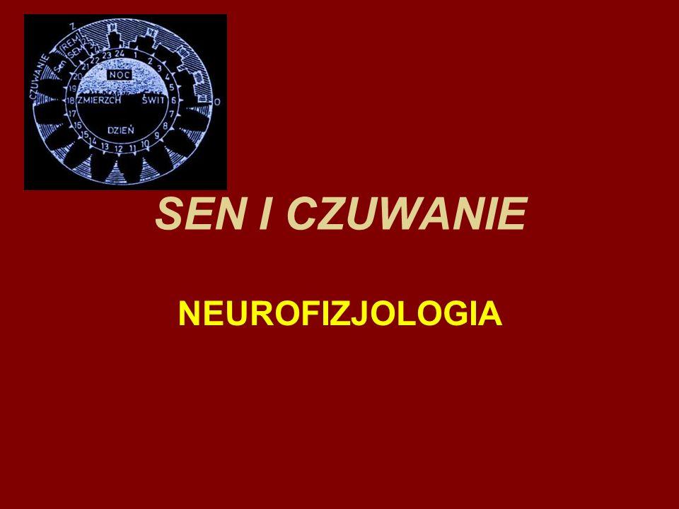 SEN I CZUWANIE NEUROFIZJOLOGIA