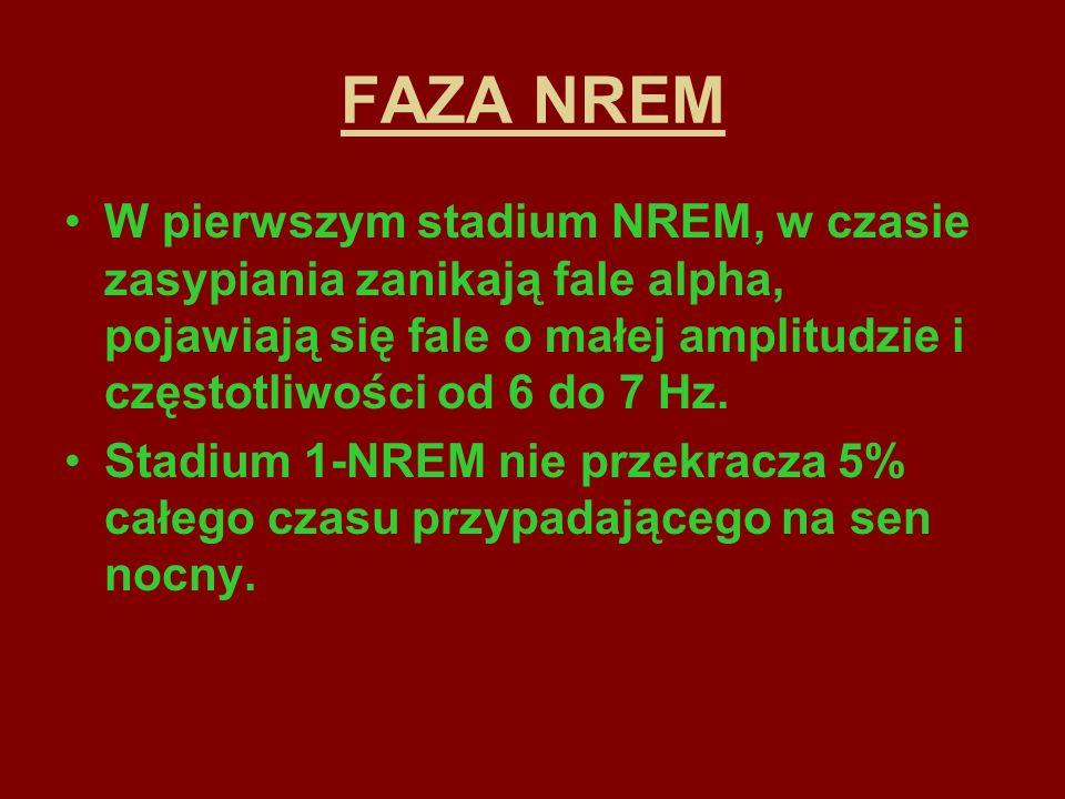 FAZA NREMW pierwszym stadium NREM, w czasie zasypiania zanikają fale alpha, pojawiają się fale o małej amplitudzie i częstotliwości od 6 do 7 Hz.