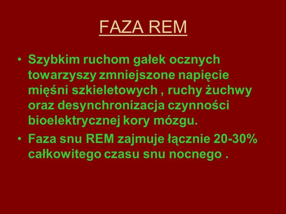 FAZA REM