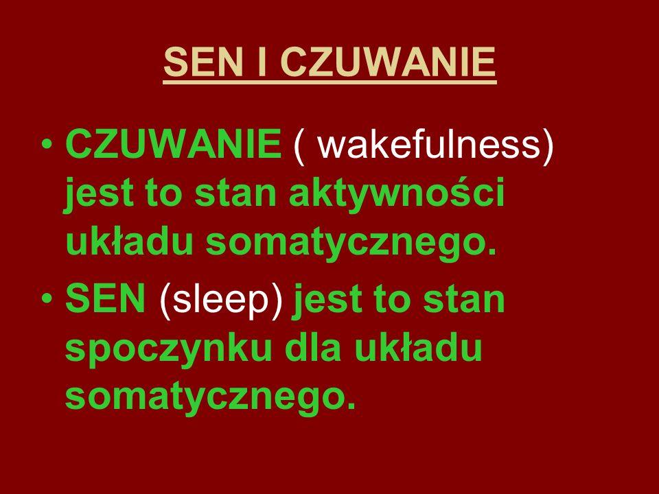 SEN I CZUWANIE CZUWANIE ( wakefulness) jest to stan aktywności układu somatycznego.