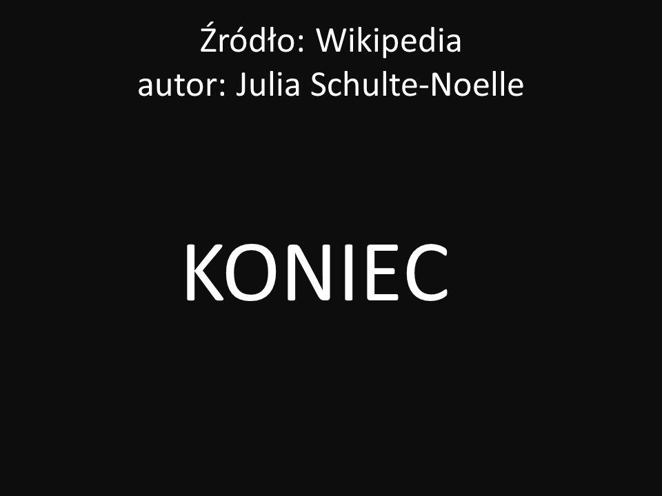 Źródło: Wikipedia autor: Julia Schulte-Noelle