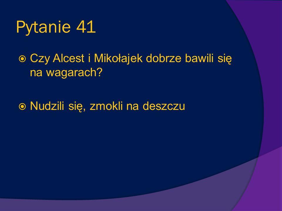 Pytanie 41 Czy Alcest i Mikołajek dobrze bawili się na wagarach