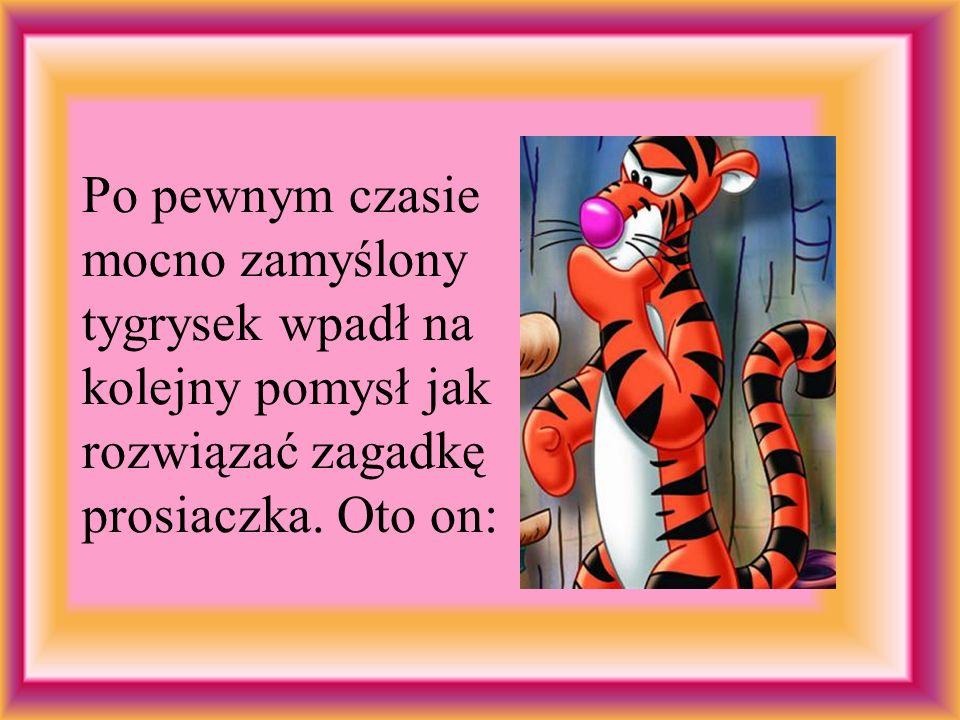Po pewnym czasie mocno zamyślony tygrysek wpadł na kolejny pomysł jak rozwiązać zagadkę prosiaczka.