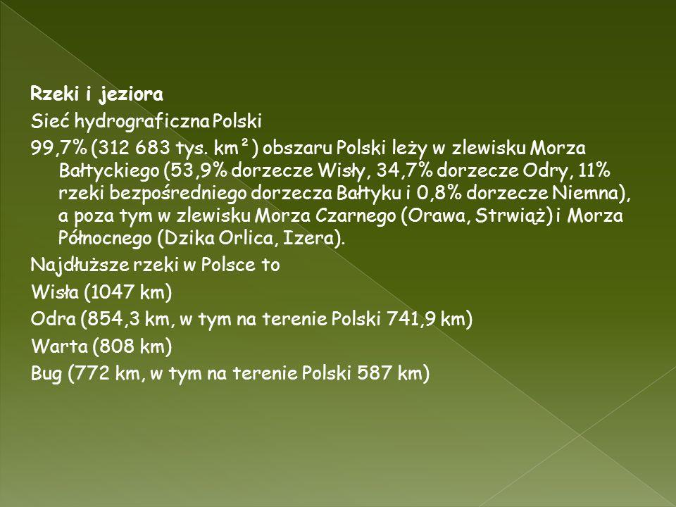 Rzeki i jeziora Sieć hydrograficzna Polski 99,7% (312 683 tys