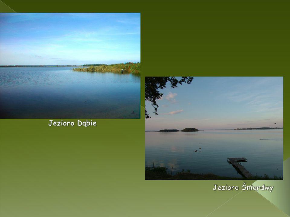 Jezioro Dąbie Jezioro Śniardwy