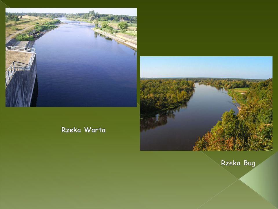 Rzeka Warta Rzeka Bug