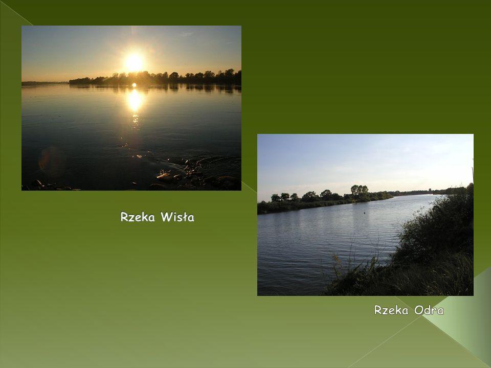 Rzeka Wisła Rzeka Odra
