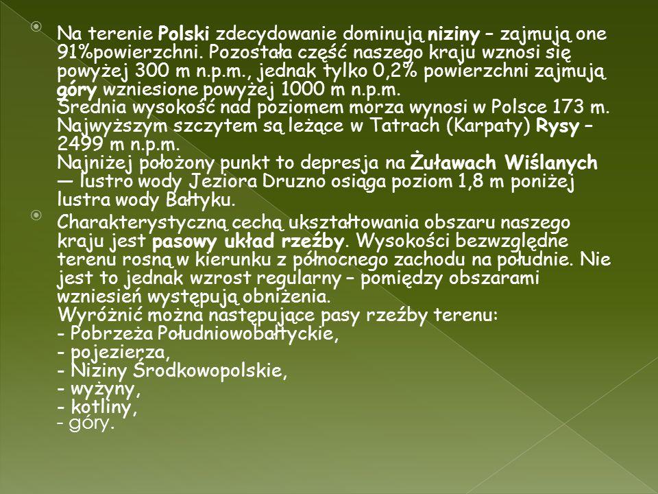Na terenie Polski zdecydowanie dominują niziny – zajmują one 91%powierzchni. Pozostała część naszego kraju wznosi się powyżej 300 m n.p.m., jednak tylko 0,2% powierzchni zajmują góry wzniesione powyżej 1000 m n.p.m. Średnia wysokość nad poziomem morza wynosi w Polsce 173 m. Najwyższym szczytem są leżące w Tatrach (Karpaty) Rysy – 2499 m n.p.m. Najniżej położony punkt to depresja na Żuławach Wiślanych — lustro wody Jeziora Druzno osiąga poziom 1,8 m poniżej lustra wody Bałtyku.