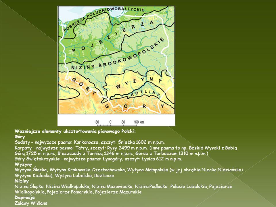 Ważniejsze elementy ukształtowania pionowego Polski: