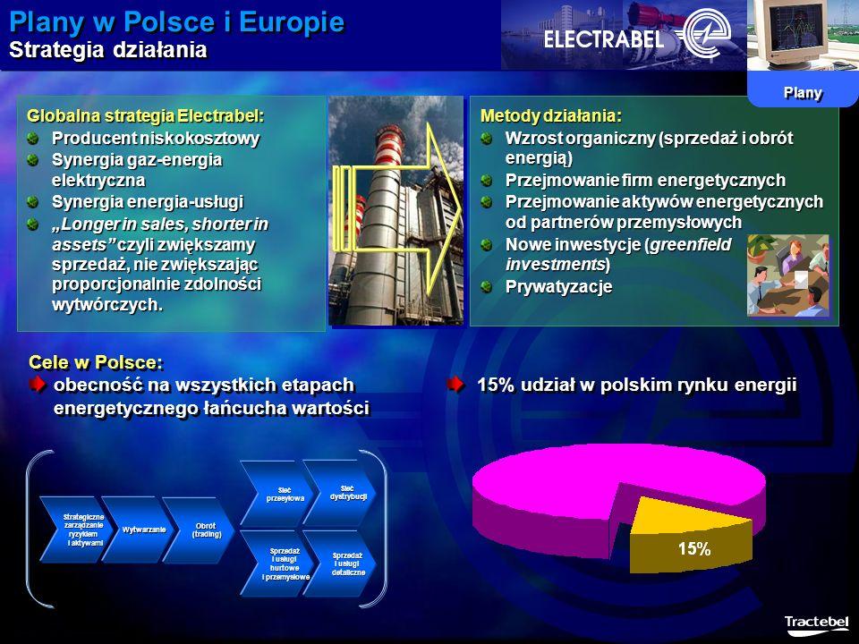 Plany w Polsce i Europie Strategia działania