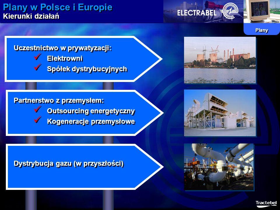 Plany w Polsce i Europie Kierunki działań