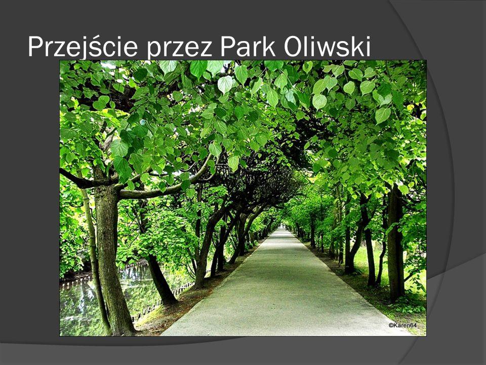 Przejście przez Park Oliwski