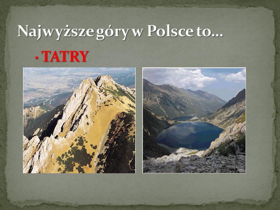 Najwyższe góry w Polsce to…