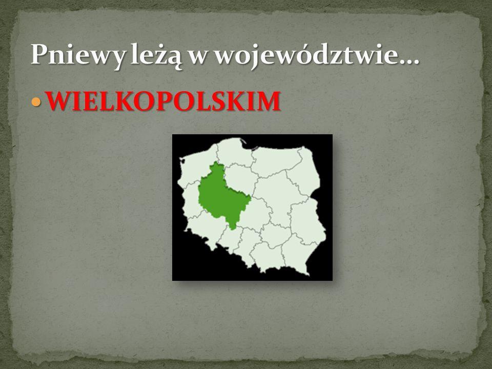 Pniewy leżą w województwie…